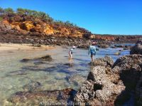 willparker_rockpools.jpg